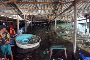 Xác định nguyên nhân ban đầu gây sập nhà hàng nổi trên vịnh Vĩnh Hy