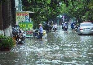 Đêm nay, bão số 1 vào Quảng Ninh-Nam Định