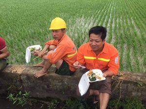 Công nhân quần đùi, ăn cơm tại ruộng xử lý sự cố điện sau mưa bão