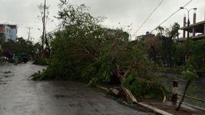 Ảnh hưởng bão số 1: Thái Bình, Nam Định, Hà Nam mất điện hoàn toàn