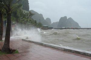 Tin bão số 1 mới nhất sáng 28/7: Đi sâu vào đất liền