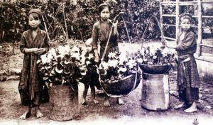 Nghề lấy ráy tai từng một thời là 'cần câu cơm' của người Hà Nội xưa