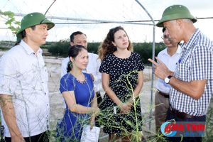 Israel sẵn sàng hỗ trợ Hà Tĩnh trong nông nghiệp công nghệ cao