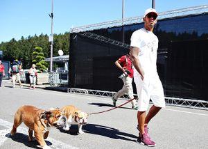 Mặc án phạt treo lơ lửng, Hamilton thảnh thơi dắt chó đi dạo trước thềm Grand Prix nước Bỉ