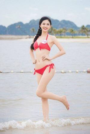 Ai sẽ nối gót Kỳ Duyên làm hoa hậu Việt Nam?