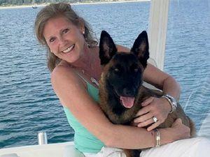 Chó vượt 30 km đoàn tụ với chủ sau khi rơi xuống hồ