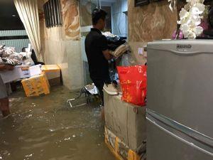 Biệt thự hơn 60 tỷ của Đàm Vĩnh Hưng ngập trong biển nước