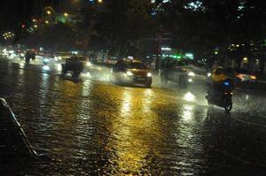 Sài Gòn lại mưa lớn, cây xanh ngã đè ô tô