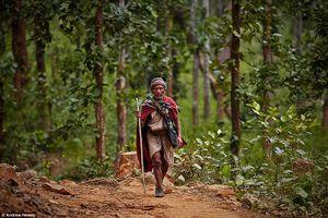Khám phá cuộc sống của những người du mục ở Nepal qua ảnh