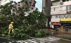 Loạt ảnh đầu tiên về siêu bão Haima càn quét Trung Quốc