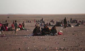 Phiến quân IS bắt dân thường làm 'lá chắn sống' ở Mosul