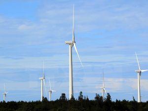 DOC hủy rà soát hành chính lần 2 với sản phẩm tháp gió Việt Nam