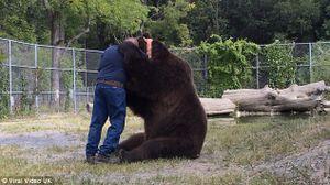 Gấu nâu ôm chặt người bạn ở trung tâm cứu hộ không rời