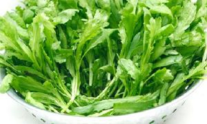 Top thực phẩm giải độc cơ thể cực tốt vào mùa thu