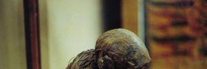 Khám phá xác ướp khỉ cực dị thời Ai Cập cổ đại