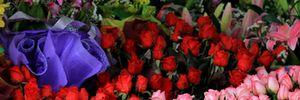 Hoa hồng tăng giá gấp 3 lần dịp Valentine