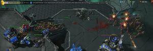 Kinh ngạc với game thủ chơi cả StarCraft lẫn Hearthstone cùng lúc