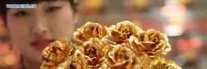TQ: Hoa hồng bọc vàng sốt dịp Valentine