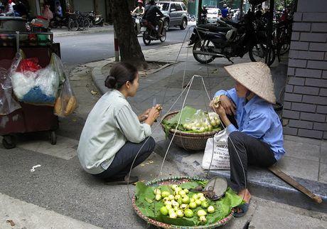 Ra mat mang luoi Hanh dong vi Lao dong Di cu - Anh 1
