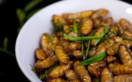Những sai lầm nguy hiểm dễ mắc phải khi ăn nhộng tằm