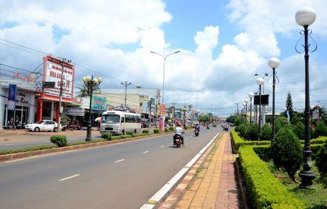 Huyện Chư Sê: Vươn lên khẳng định vị thế kinh tế trọng điểm của tỉnh Gia Lai