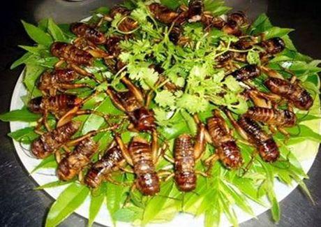10 mon ngon khong the nao quen o vung que Binh Phuoc - Anh 4