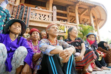 Le hoi dam trau khong con canh 'ong trau mau chay dau roi' - Anh 13