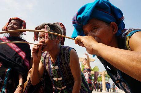 Le hoi dam trau khong con canh 'ong trau mau chay dau roi' - Anh 14