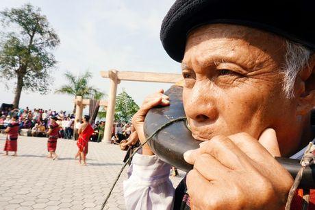 Le hoi dam trau khong con canh 'ong trau mau chay dau roi' - Anh 6