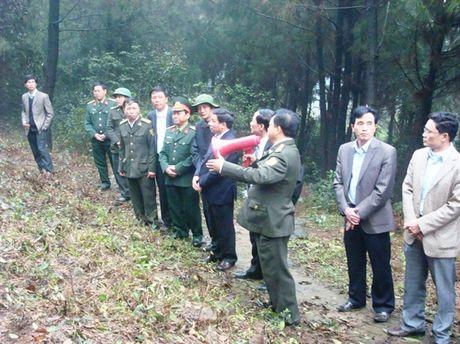 Hà Tĩnh: Đất lâm nghiệp cơ bản có chủ