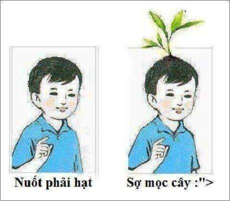 10 hieu lam thu vi cua tre tho Viet Nam ngay xua - Anh 4