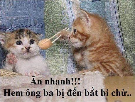 10 hieu lam thu vi cua tre tho Viet Nam ngay xua - Anh 5