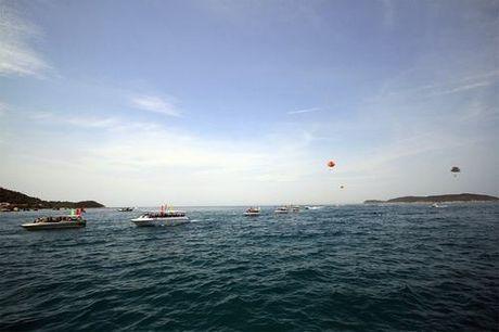 Gan 50 cano dieu hanh tren bien Cu Lao Cham - Anh 1