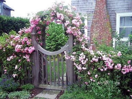 2 74612 Bạn yêu thiên nhiên, hay đọc bài này để biết cách trang trí một khu vườn mini cho ngôi nhà