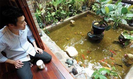 Tai san kech xu cua ca si Quang Dung - Anh 13