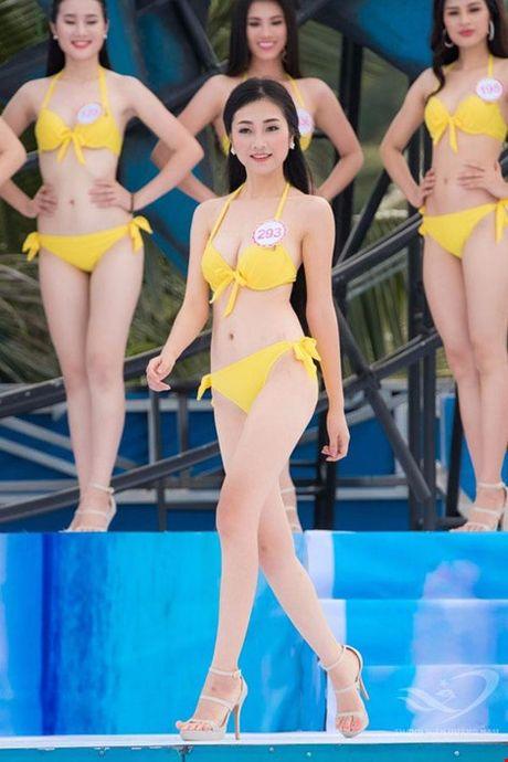 Nguoi dep giong hoa hau Nguyen Thi Huyen nhat o Hoa hau VN 2016 - Anh 15