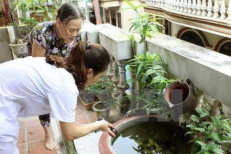 Phong chong virus Zika: Chua han che di lai giua cac dia phuong - Anh 1