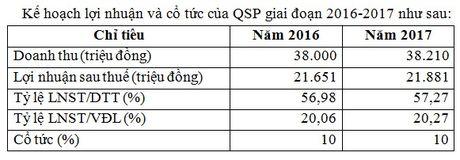 Hon 10,7 trieu co phieu Tan Cang Quy Nhon giao dich tren UPCoM - Anh 1