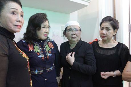 "Dong nghiep den vieng ""huyen thoai cai luong"" Thanh Tong trong dem muon - Anh 8"
