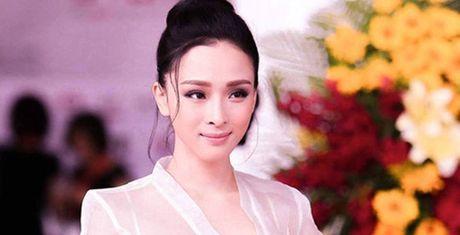 Nhung dieu bi an trong vu an hoa hau Phuong Nga - Anh 1