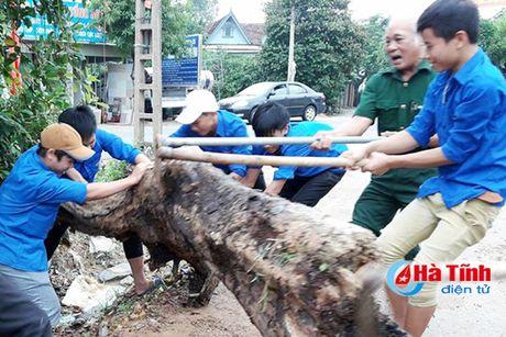 Tuoi tre Can Loc nao nuc don chao 'Di san tu lieu the gioi' - Anh 3