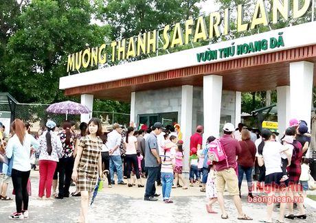 Nghe An don doan khao sat du lich vung Bac Trung Bo - Anh 1