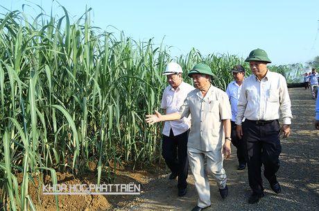 Phat trien kinh te vung Bac Trung Bo: 'Lien ket gi cung phai co doanh nghiep' - Anh 2