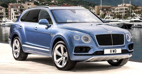 Chiec xe SUV may dau dau tien cua Bentley se chay nhanh nhat the gioi - Anh 12