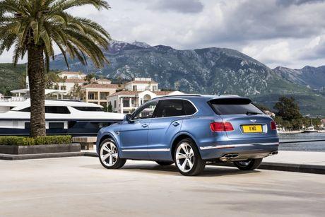 Chiec xe SUV may dau dau tien cua Bentley se chay nhanh nhat the gioi - Anh 15