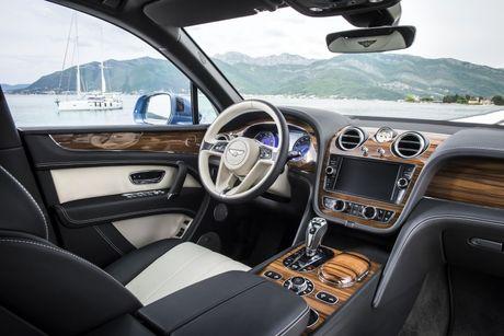 Chiec xe SUV may dau dau tien cua Bentley se chay nhanh nhat the gioi - Anh 4