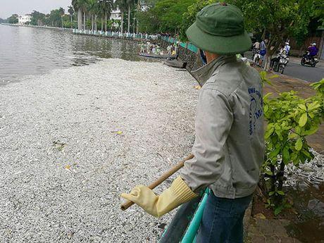 Dat may tao oxy cong suat lon cuu ca Ho Tay - Anh 2