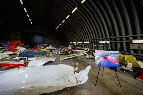Uy ban dieu tra quoc te cong bo thu pham ban roi may bay MH17 - Anh 2