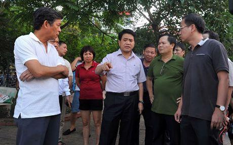 Vu ca chet trang Ho Tay: Toan bo mat nuoc ho khong co oxy - Anh 4