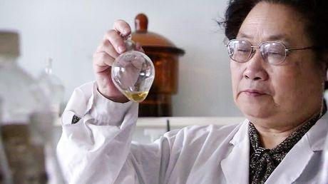 Giai Nobel Y-Sinh hoc 2016 vinh danh giao su Nhat Ban Yoshinori Ohsumi - Anh 13